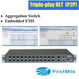 Aggregation Switch with Embedded EMS for P2p FTTX System