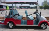 New Design 6 Seater Electric Sightseeing Bus with Fashionable Appearance
