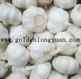 Chinese New Crop Pure White Garlic