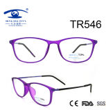 New Hot Sale Tr90 Optical Frame (TR546)
