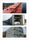 Special Container Consolidate Shipping From China to Middle East