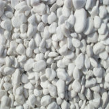 White Round Pebble Stone Wholesale for Garden