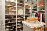 Walk in Closet with Tall Glass Front Shoe Cabinets (BY-W-32)