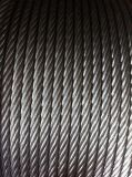 Galvanized Steel Wire Rope 6X37 Manufacturer Customized for Lifting