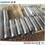 3000lb Stainless Steel Hexagonal Nipple A403 (WP1925, WP1925N, WPS31725)