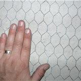 Hexagonal Metal Wire Mesh (XA-HM51)