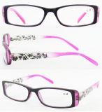 Eyeglasses Frame/Designer Eyewear/Plastic Eyewear (RP483007)