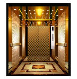 Fjzy-High Quality and Safety Passenger Elevator Fj-15138
