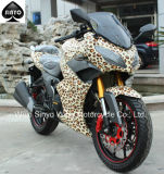 Nice Paint Chinese Hot Sell Racing Motorcycle