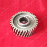 HOWO Parts Driven Cylindrical Gear (Az9761320016)