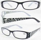 Eyeglasses Frame/Eyewear (RP486013)