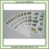 Self-Adhesive Paper Colorful Printing Label (S2P008)
