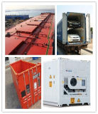 Special Consolidate Shipping Container Services From China to UK