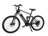CE Pas Frame Hidden Battery Electric Mountain Bicycle (PB112)