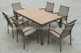 Patio/Garden/Leisure Furniture Set-Outdoor Furniture (D560 & S260)