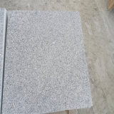 China G603 Granite From Laizhou Granite Quarry Bella White Light Grey Granite