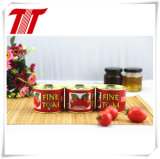 Gino Canned Tomato Paste 70 G, 210 G, 400 G, 2200 G with Wholesale Price