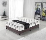Memory Foam Pillow Top Mattress (8341#)