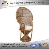 Well Furnir Whitewash Dramatic High-Back Accent Rattan Peacock Chair