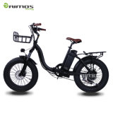 Best Seller Adult 20inch off Road Time Machine Electric Bike