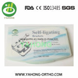 Dental Material Orthodontic Self Ligating Metal Bracket Ce FDA ISO13485