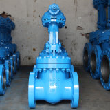 GOST 12815-80 Flange Standard Gear Operate Gate Valve with Cu-Tr Certificate