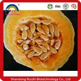 Water Soluble Pumpkin Seed Extract/Cucurbita Pepo Seed Extract/Pumpkin Seed Powder