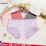 Wholesale Womens Cotton Underwear