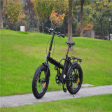 China Cheap Fat Tire Snow Beach Electric Bike 500W