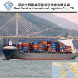 Sea Freight Door to Door China to San Francisco