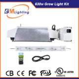 2017 Ebm Hydroponic Growing Systems 630W CMH Double Ended Grow Light Kit for Hydroponics Kits