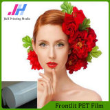 Brilliant Color Frontlit Printing Pet Film