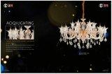Fashion Hot Sale Crystal Chandelier Light