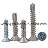 Stainless Steel Csk Tek Self Tapping Drilling Screw