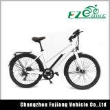 Ezbike 36V 250W City Electric Bike for Lady