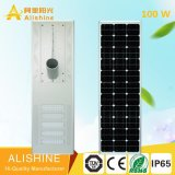 with Design IP 65 Ce RoHS 100 W LED Solar Light for Garden Lighting