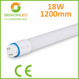 Direct LED Replacements for T8 Tubes with Ballast Compatible