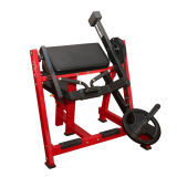 Fitness Equipment / Gym Equipment for Steated Biceps Curl (HS-1018)