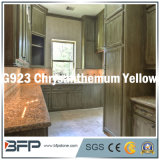 Project Material Natural Granite Slab for Kitchen Top/Wall/Paving