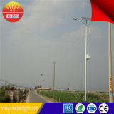 New Trend 6m 30W Solar LED Street Light Price