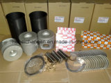 Engine Parts for Higer, Yutong, Kinglong Bus