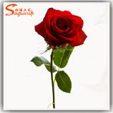 China Supply Dry Flowers Artificial Real Touch Rose on Wholesale