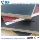 AA Grade Black/Brown/Red Film Faced Marine Plywood for Construction