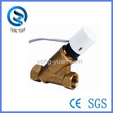 Electric Two-Way Dynamic Balancing Brass Valve for HVAC (BSPF-25)