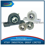 Xtsky Pillow Block Bearing (SA208)