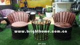 Leisure Furniture / Hotel Furniture (BP-229)