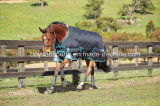 Horse Turnout Ripstop Blanket for Winter