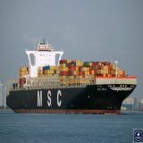 Ocean Freight From Shenzhen to New York by Msc