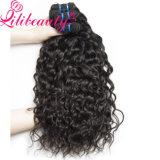Wholesale Price Natural Color Water Wave Brazilian Virgin Hair
