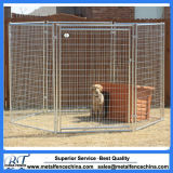 Wire Mesh Galvanised or Powder Coating Dog Kennel